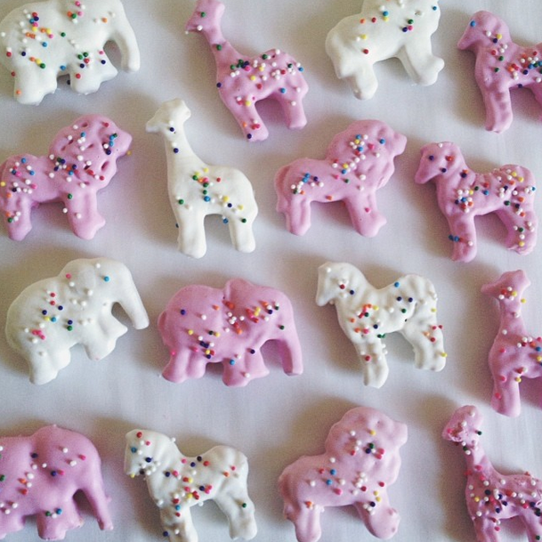 homemade frosted animal cookies butter me up brooklyn